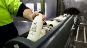 Unpasteurised milk